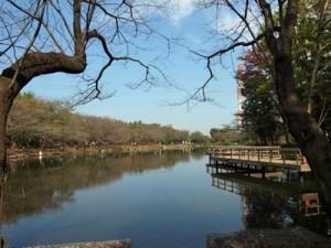 tsurugashima-citypark